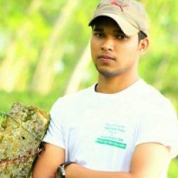 Profile picture of সোহান সরকার